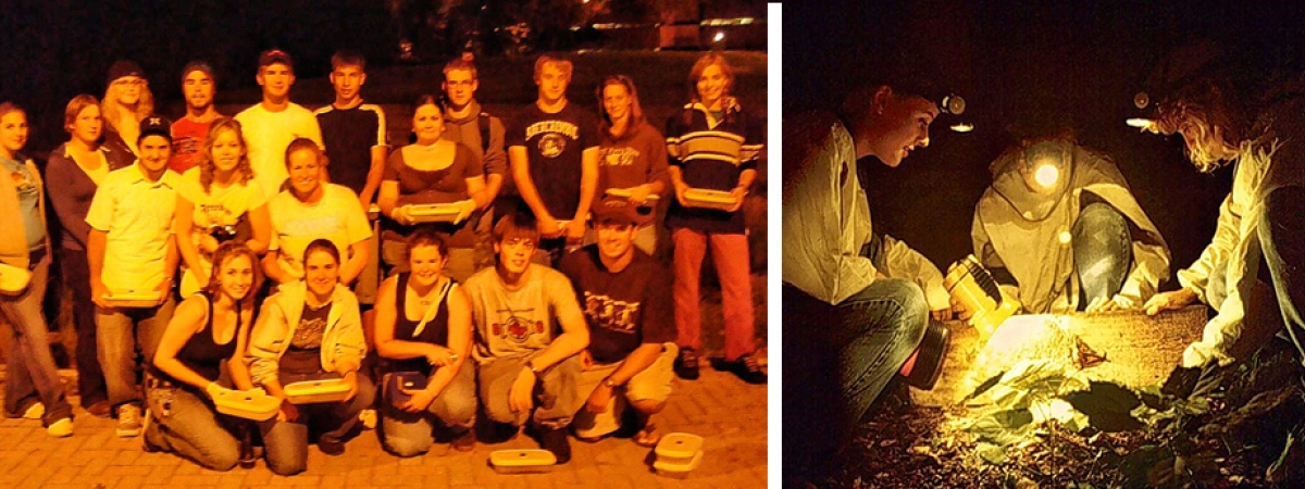 Students studying salamanders at night