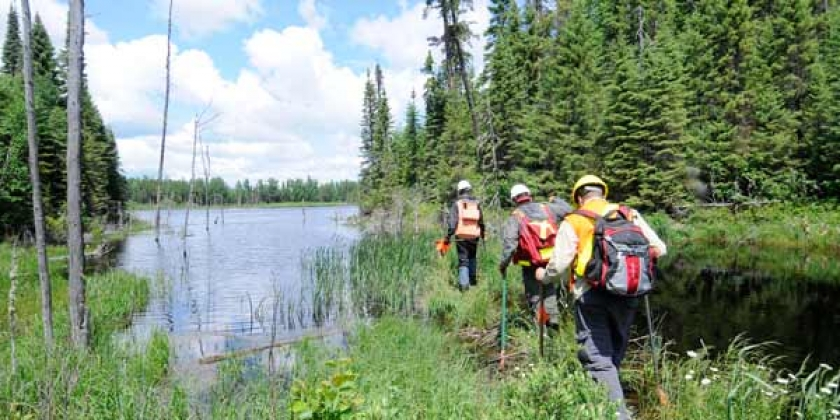 forest resources lab members walking by a beaver dam